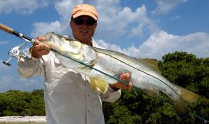 world-class light tackle sportfishing for tarpon, snook, redfish, trout, kingfish and more with Charter Boat Captain Wade Osborne in Tampa Bay Area, St Pete and Clearwater