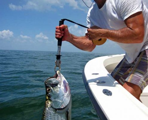 #TarponFishingCharters