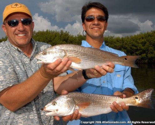 #Redfish