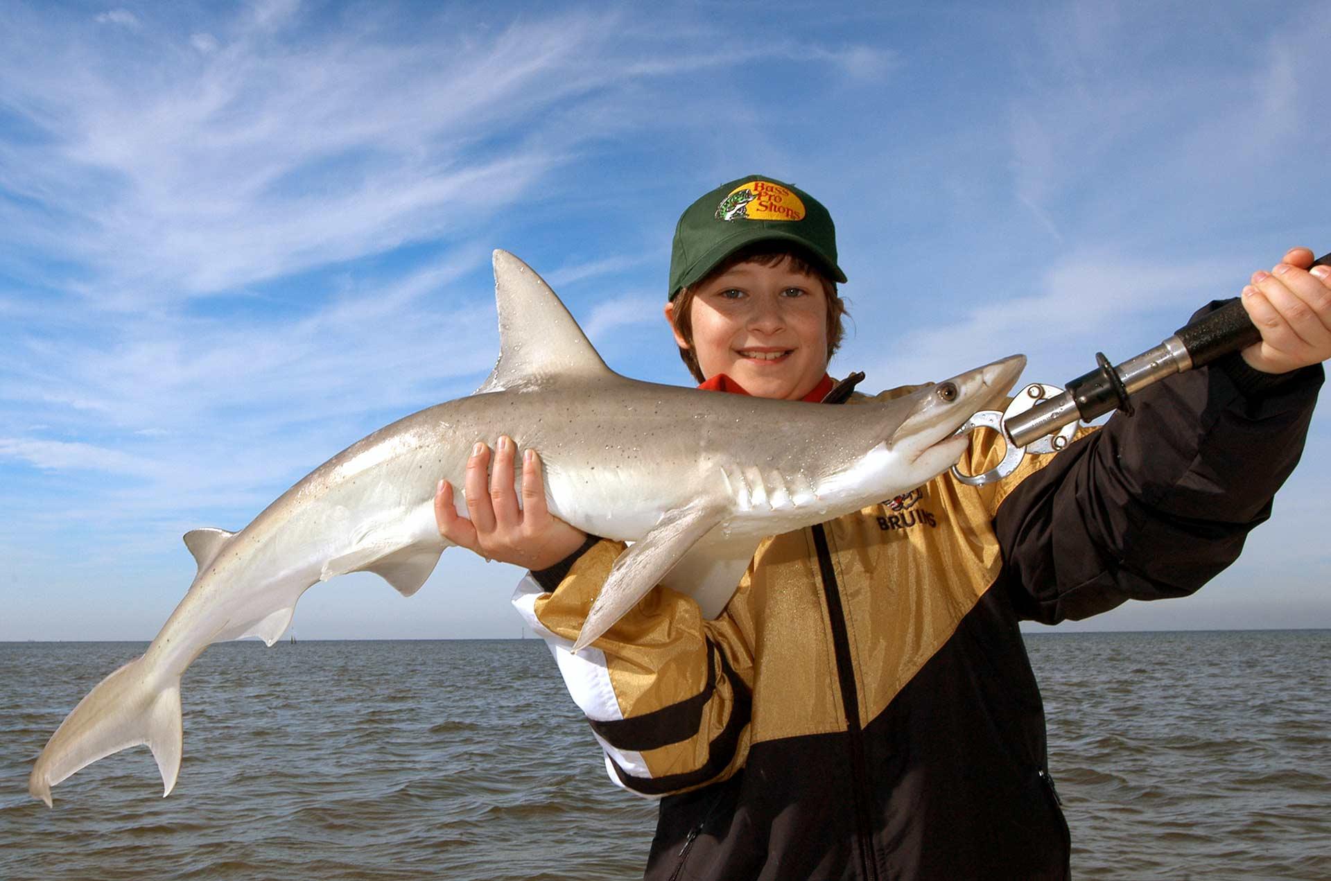 Tampa bay shark fishing afishionado guide services for Fishing tampa bay
